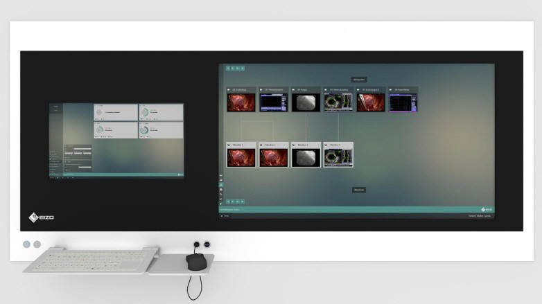 EIZO - CuratOR Surgical Panel SP2-24-49